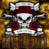 Guns Reloaded