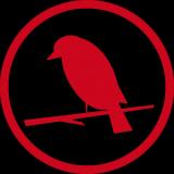 Red Bird Theory